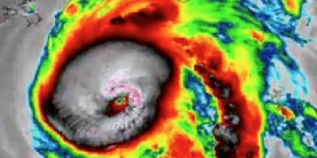 """""""Busquen refugio inmediatamente"""": huracán Michael a un paso de impactar Florida con vientos de 225 km/h y una marejada ciclónica"""