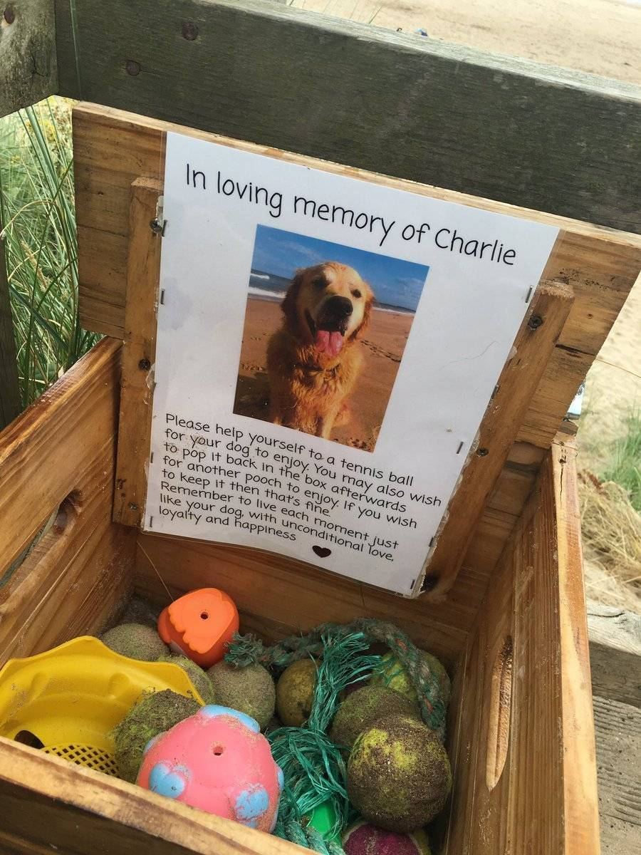 em memória de charlie