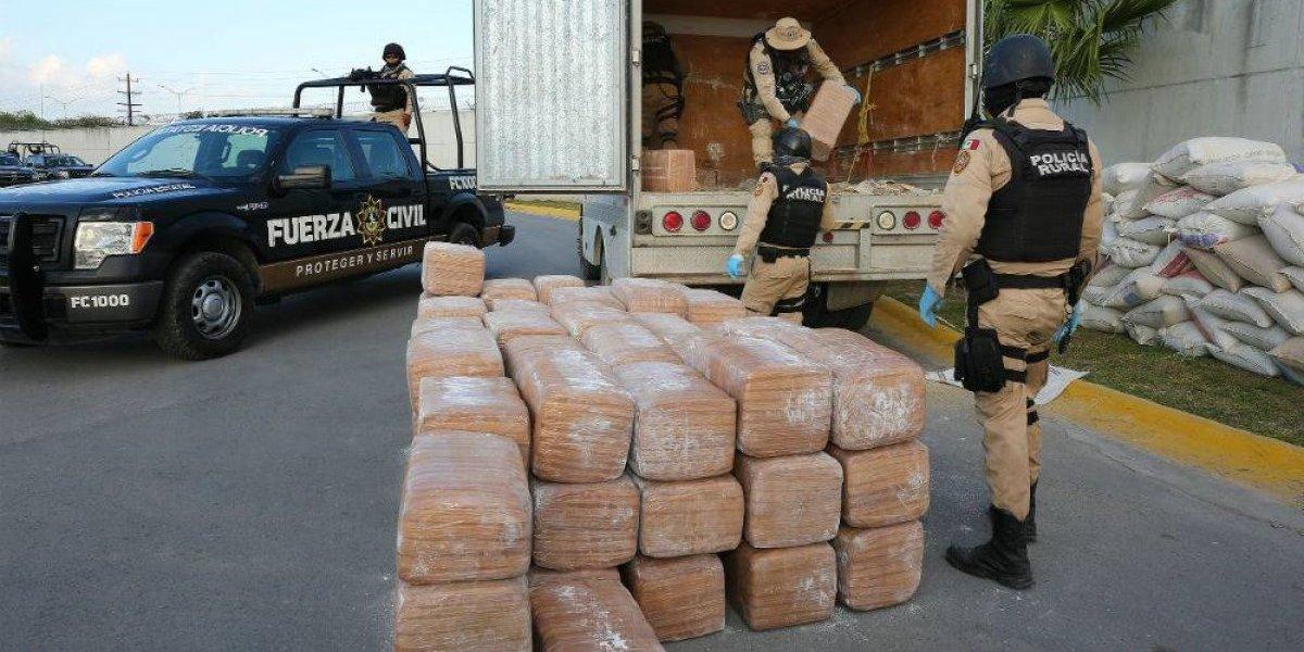 Policía Rural decomisa casi una tonelada de marihuana en Monterrey