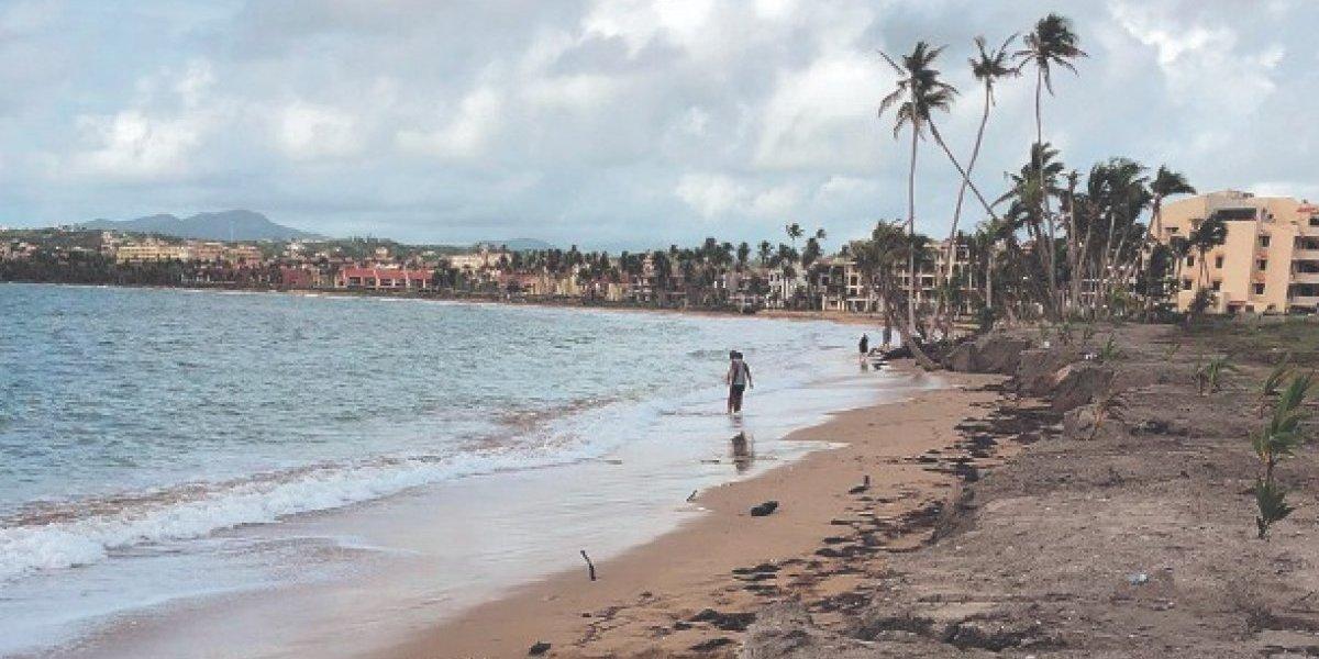 DRNA detiene relleno en playa de Palmas del Mar