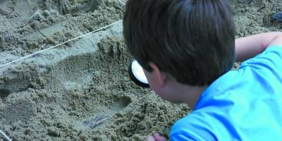 8 atrações para o Dia das Crianças