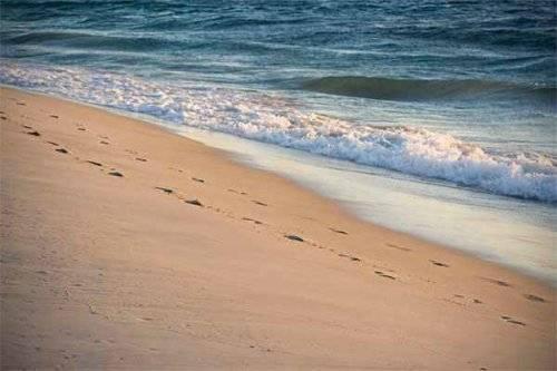 playa-a7c19481270dd7692db12edb553fd155.jpg