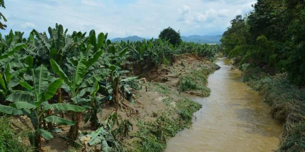 Encontraron a un hombre descuartizado y metido en un saco de yute en Mocache, Los Ríos