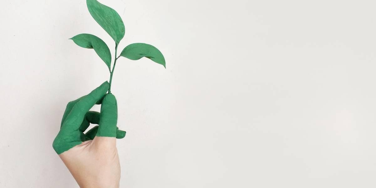 Cada vez mais necessária, sustentabilidade agrega valor a imóvel
