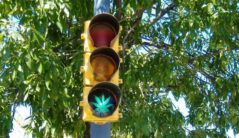 marihuana-87f5460e839bb24c6e5f5f4f70842285.jpg