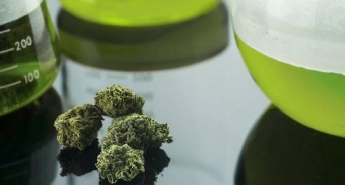 cannabismedicinal680x365c-f81caf20bdfbee388897248126f963b1.jpg
