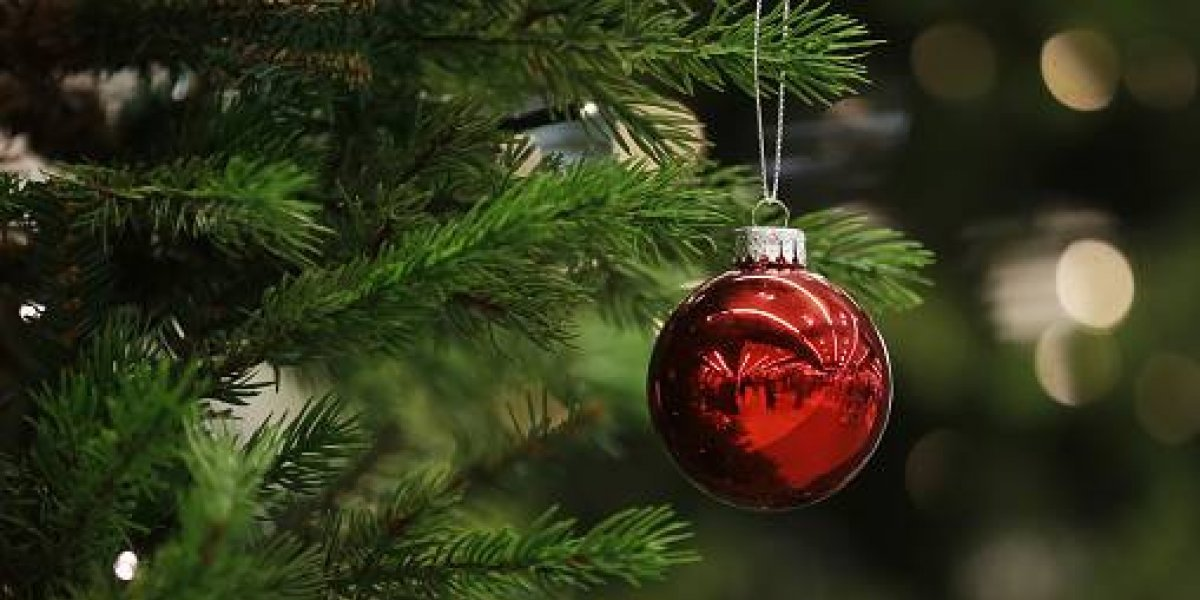 ¿Cuándo debemos poner y retirar el Árbol de Navidad?