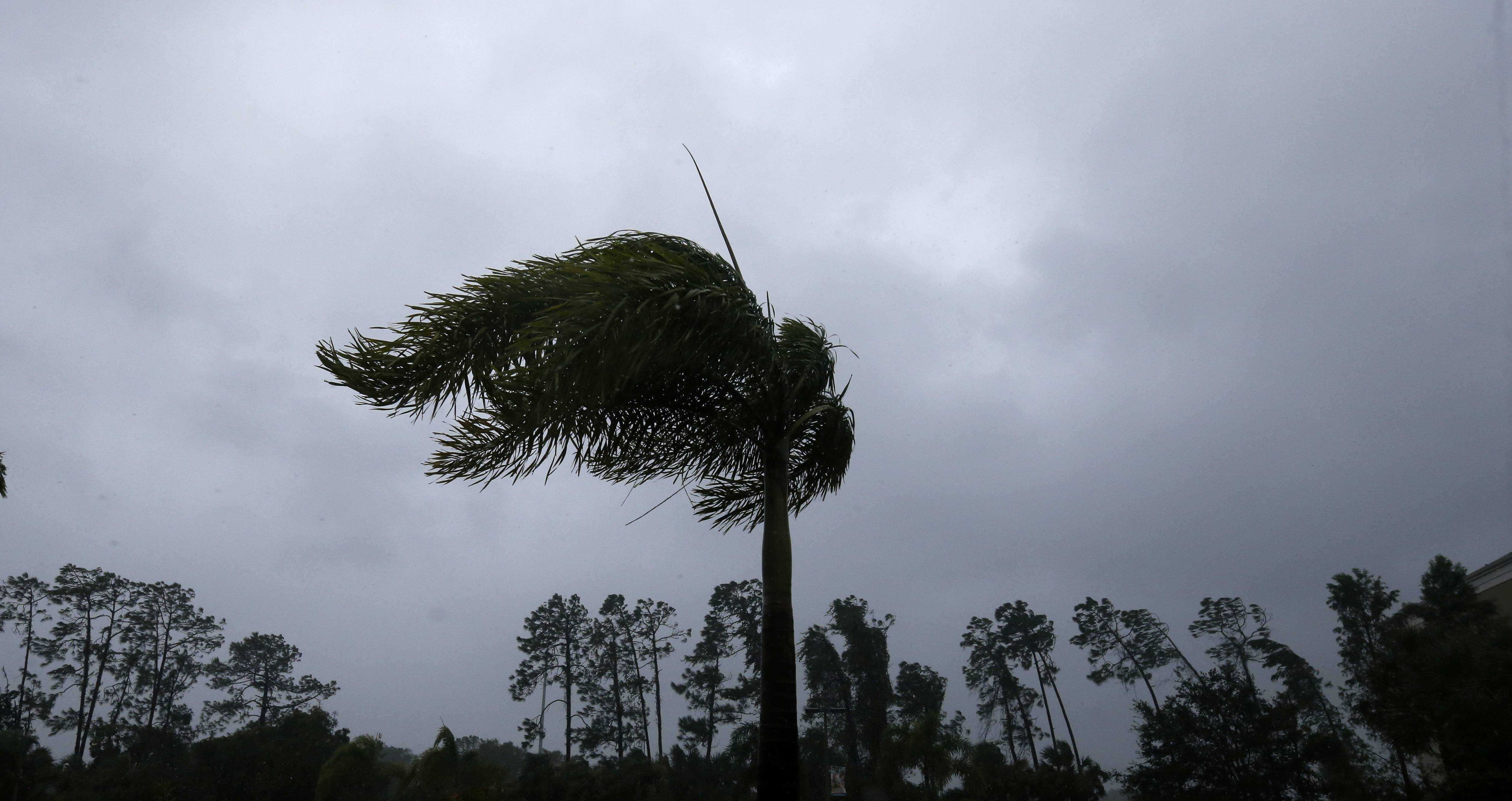 hurricaneirmapuer1-ec014eb62de0559afeb0cd826ae78358.jpg