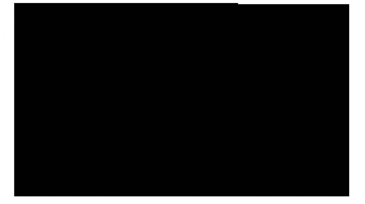 logonybbw02-6cb19cdf0a00cb570ec128aeb2900a69.jpg