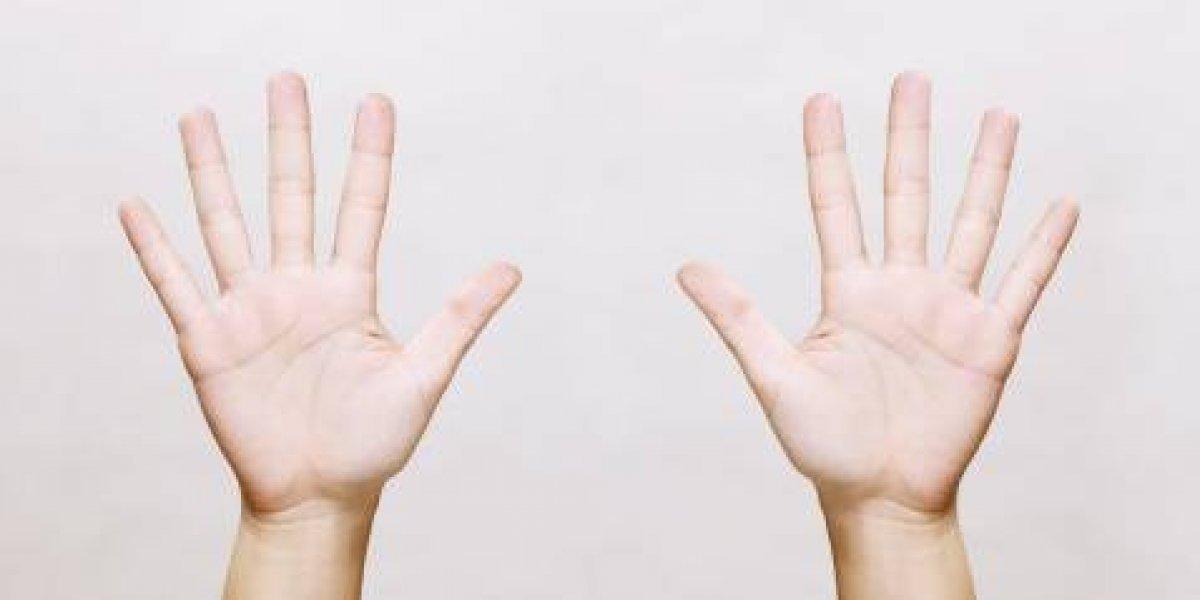 Controversial estudio: científicos detectan que el largo de los dedos podría revelar homosexualidad de las personas