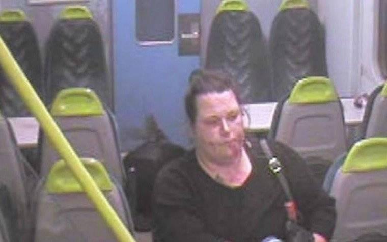 Una mujer apuñala con saña durante cuatro minutos a una amiga en un tren en el Reino Unido