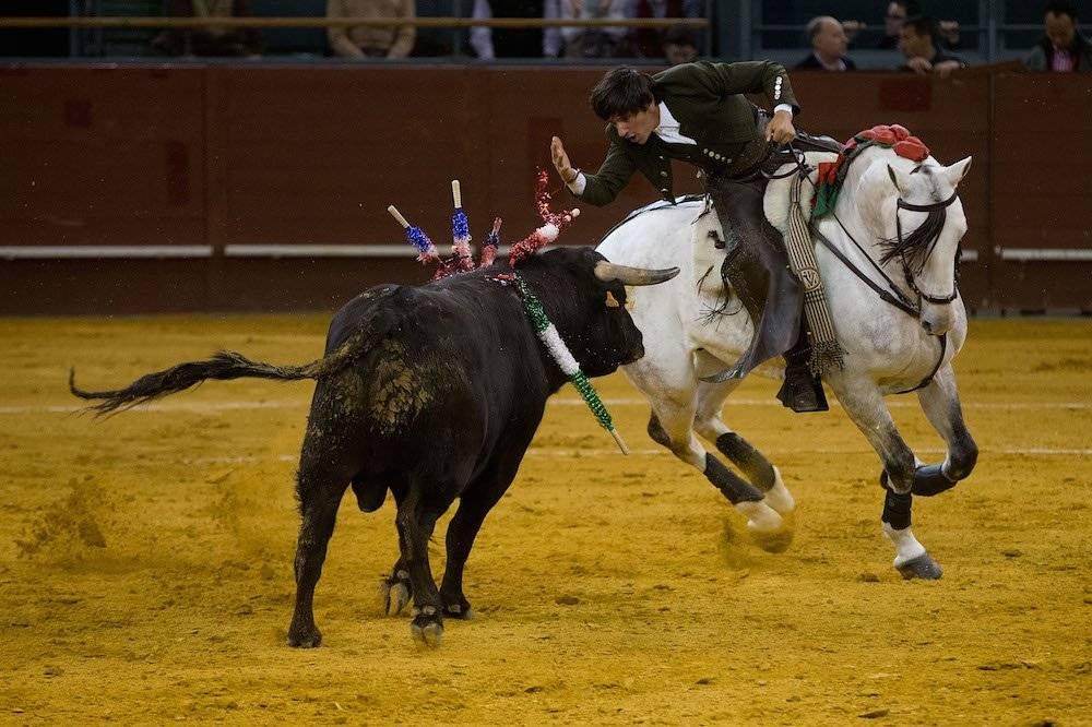 Ventura trabajará con toros de la dehesa de Barralva y de Villa Carmela. / Getty Images