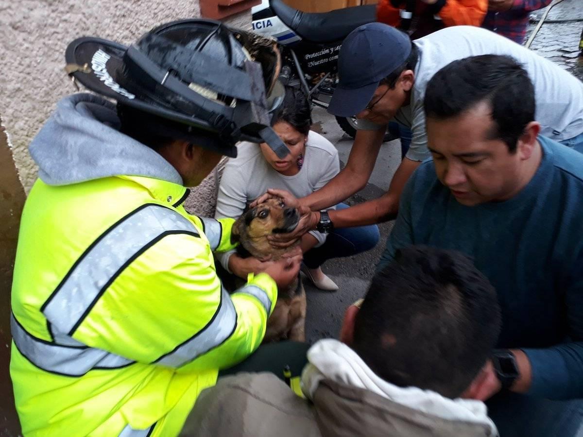 Rescatan a un perro de un incendio en Cuenca Twitter Bomberos Cuenca