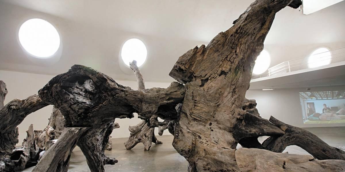 Artista e ativista chinês Ai Weiwei ganha exposição monumental em São Paulo