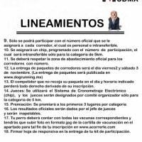 Lineamientos de participación.
