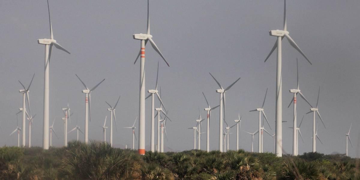 Debate del costo de gasolinas debe incluir transición a energía verdes