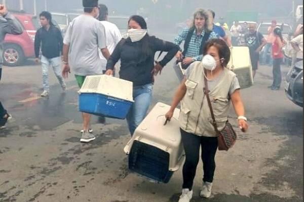 Imágenes del incendio forestal en Baños