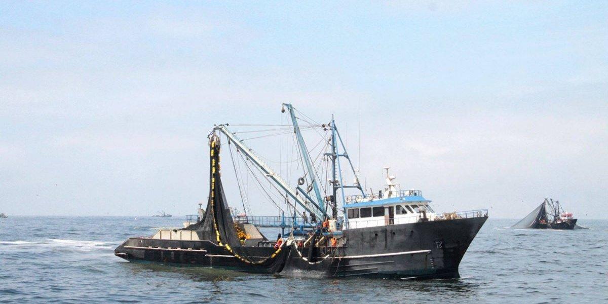 Gobierno prepara defensa legal para pescadores condenados en Bahamas