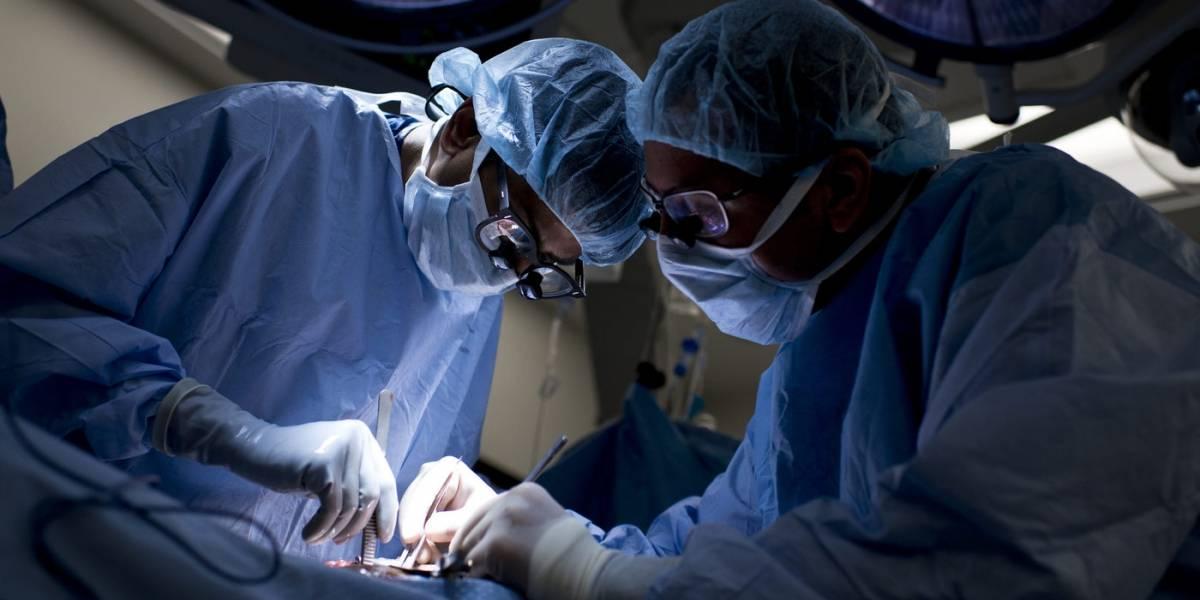 9 mitos sobre la donación de órganos que confunden a las familias