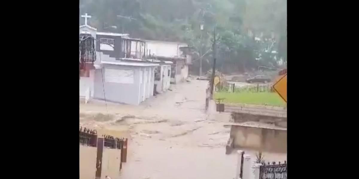 Fuertes lluvias causan nuevos derrumbes en Utuado