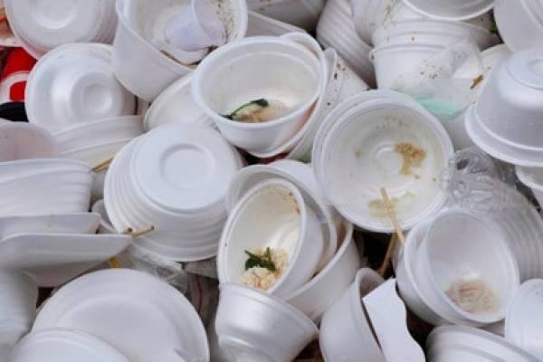 envases de foam puerto rico