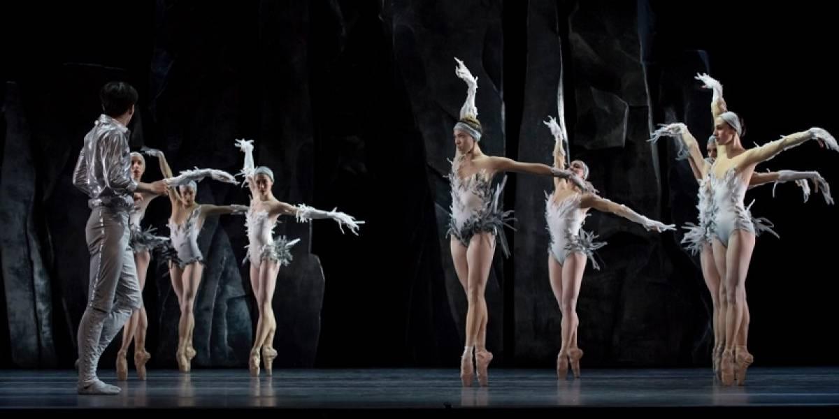 """""""Les Ballets de Monte Carlo"""" presentará obra basada en """"El Lago de los Cisnes"""", en febrero 2019"""
