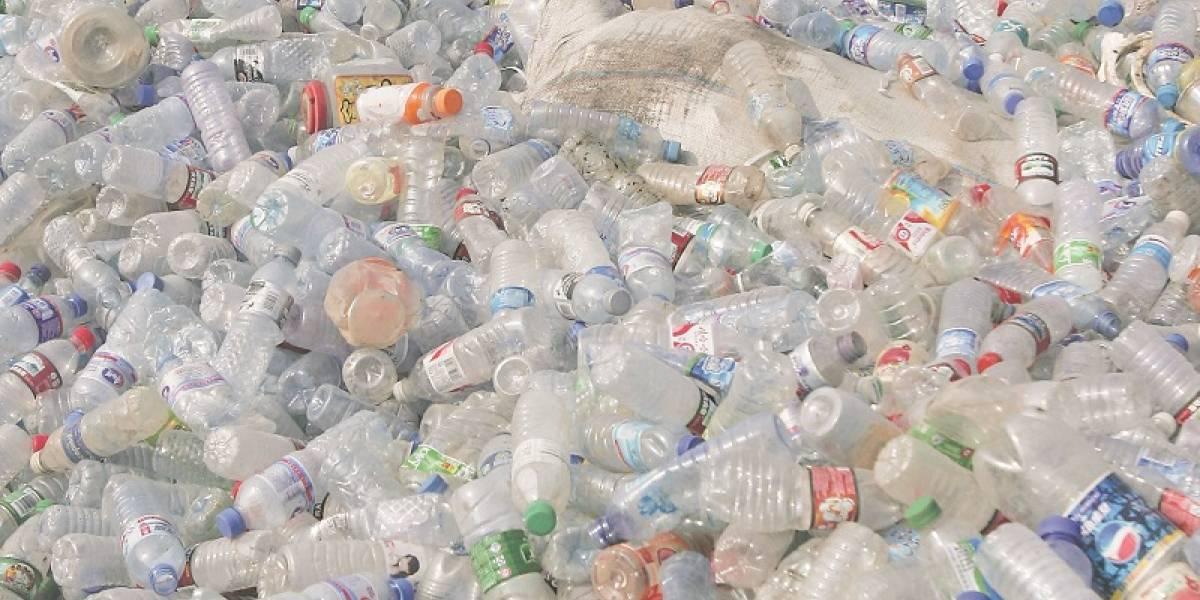 Ya es un hecho confirmado: estamos comiendo plástico
