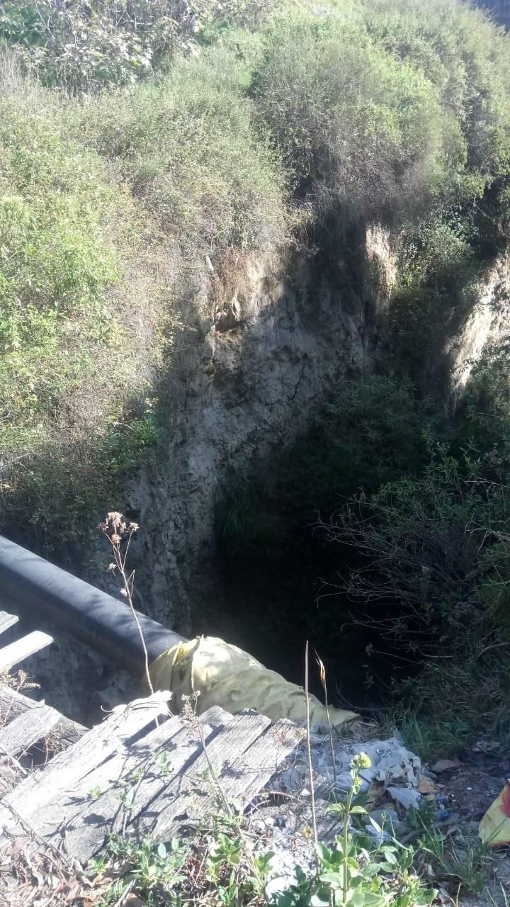Rescatan a perro que cayó en una quebrada en el valle de los Chillos BOMBEROS QUITO