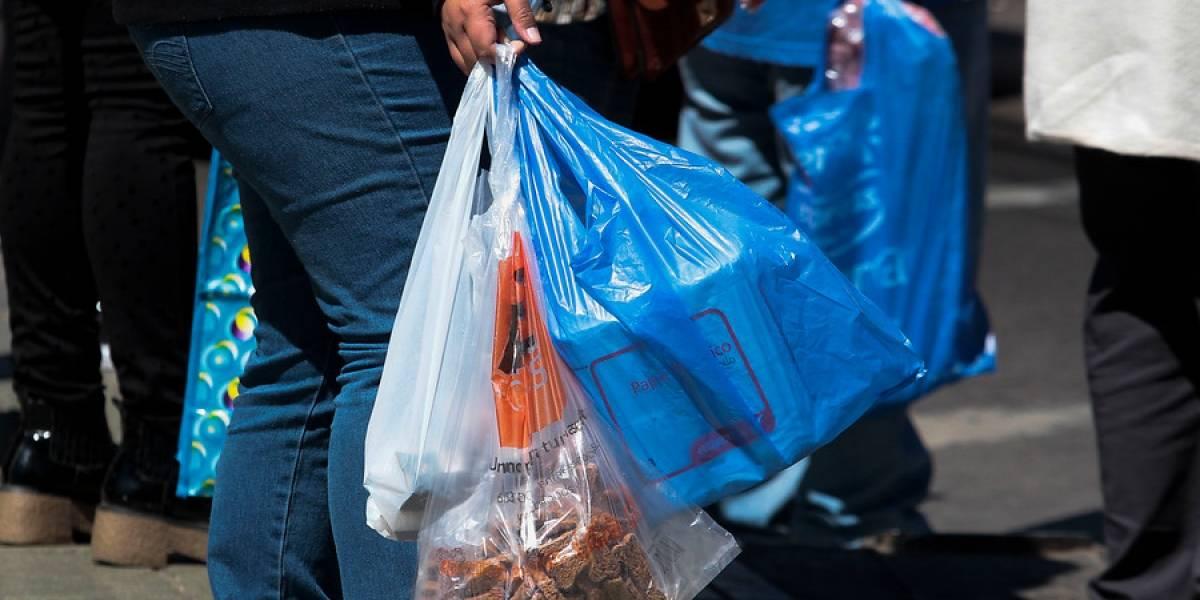 Encuesta afirma que consumidores no se han visto perjudicados con la prohibición de las bolsas plásticas