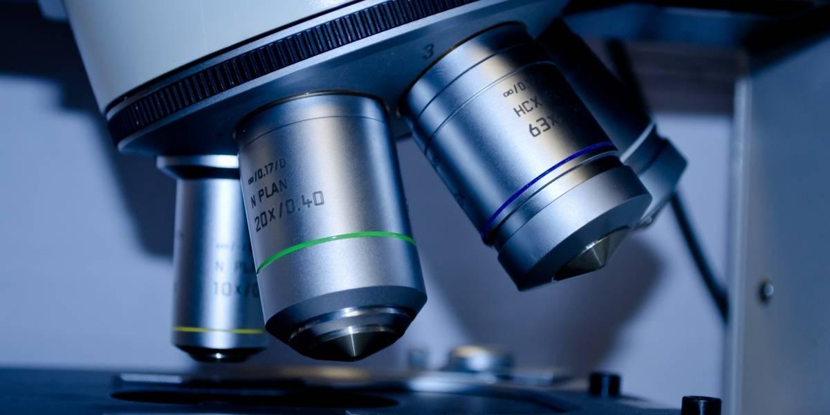 Doze pesquisadores brasileiros estão entre os mais influentes do mundo