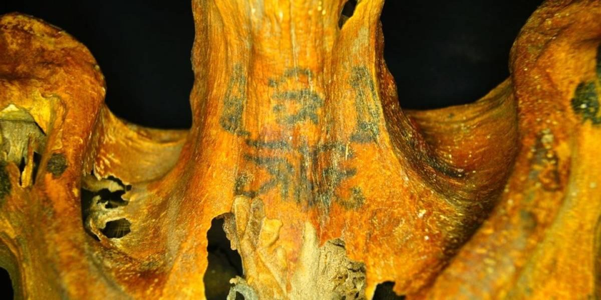 [Fotos] Descubren una momia con 30 tatuajes en su cuerpo: ¡creen que fue una maga!