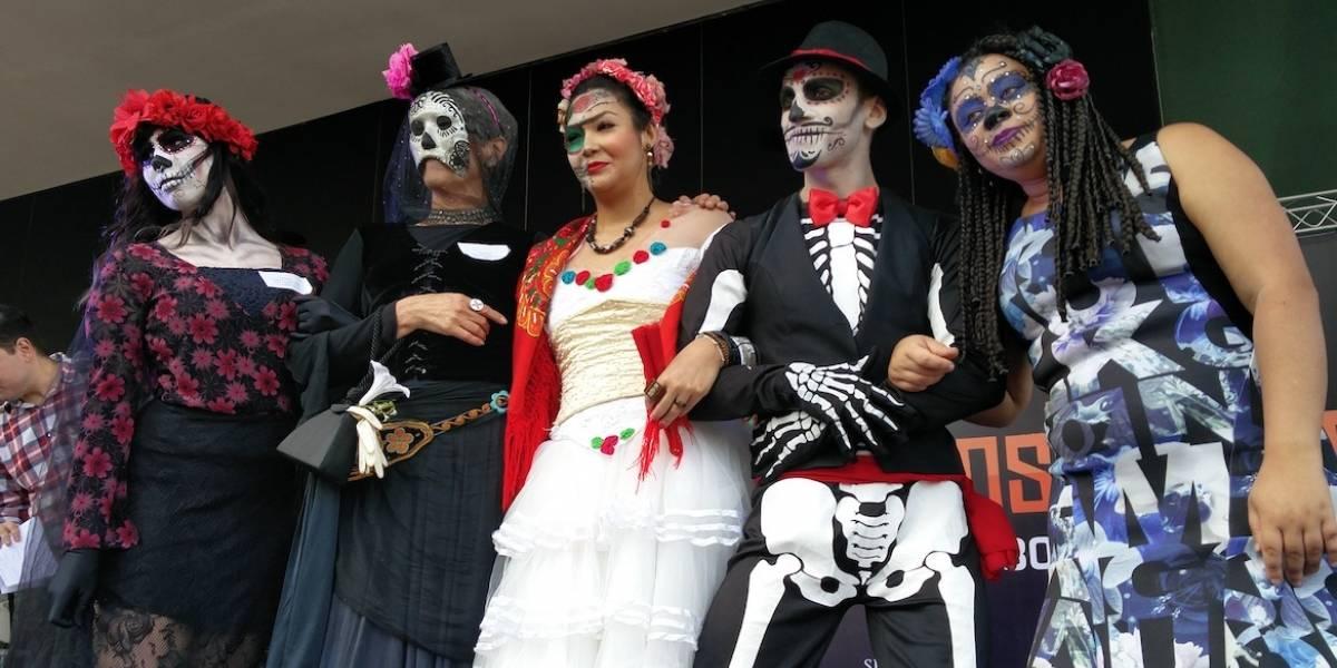 Fim de semana em SP: Fiesta de Dia de Muertos, mostra de cinema grátis e mais