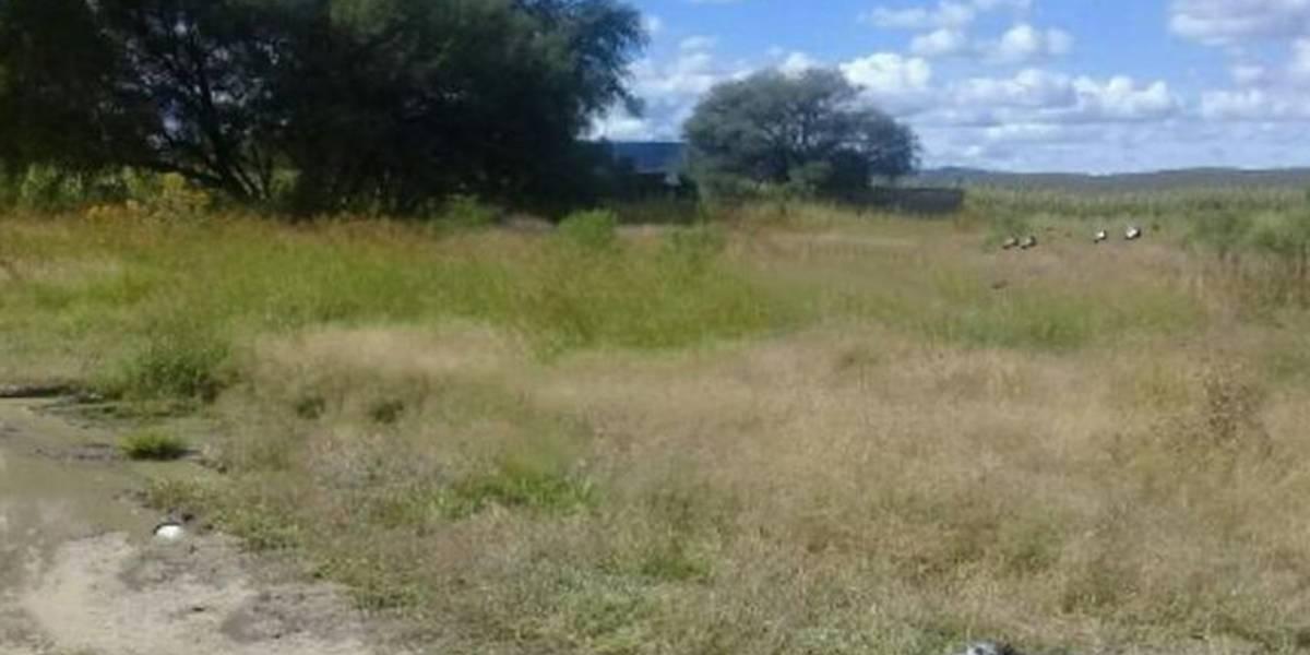Localizan 19 cuerpos en fosas de Lagos de Moreno, acaba la búsqueda