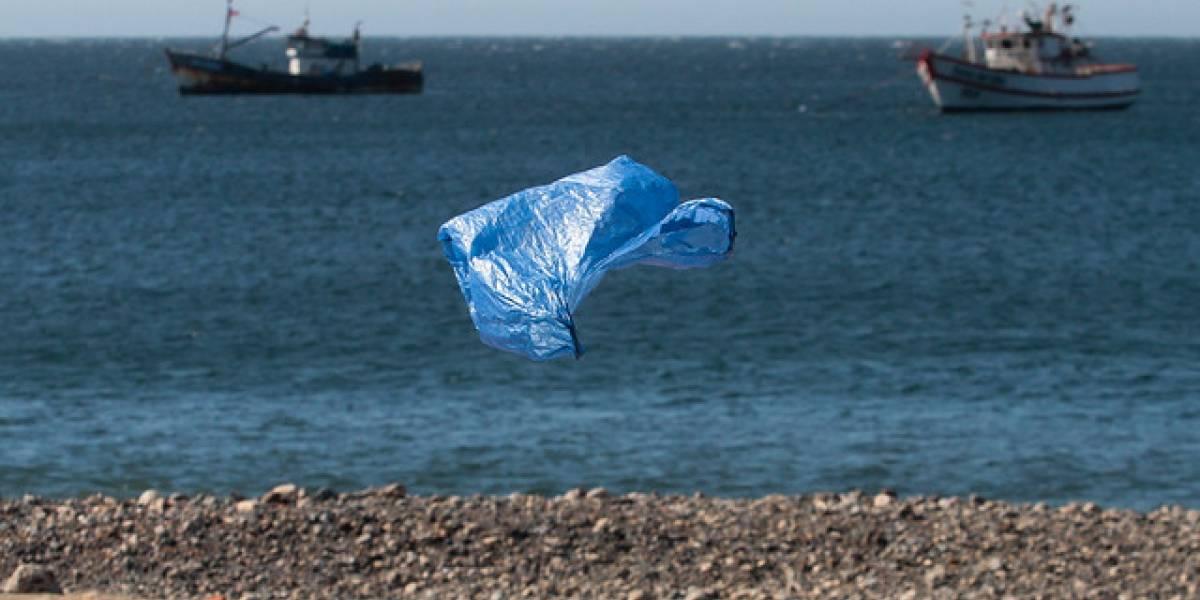 Pero no firmamos el tratado de Escazú: Chile suscribe compromiso para evitar que los plásticos se conviertan en basura