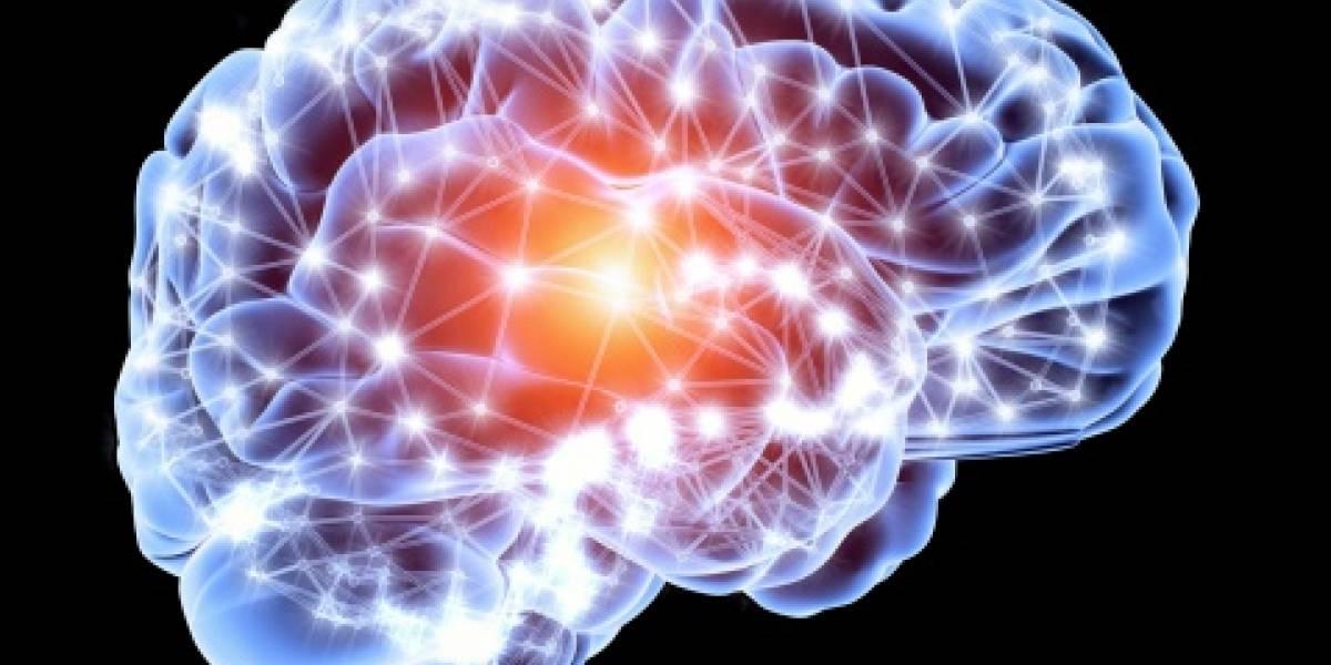 Revelan que las personas son capaces de crear nuevas neuronas a cualquier edad gracias a un simple y sencillo ejercicio