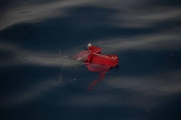 Accidente de Lion Air