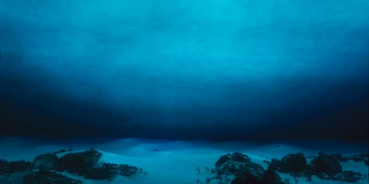 Alarmante estudio: el fondo del océano se está disolviendo rápidamente por culpa de la humanidad
