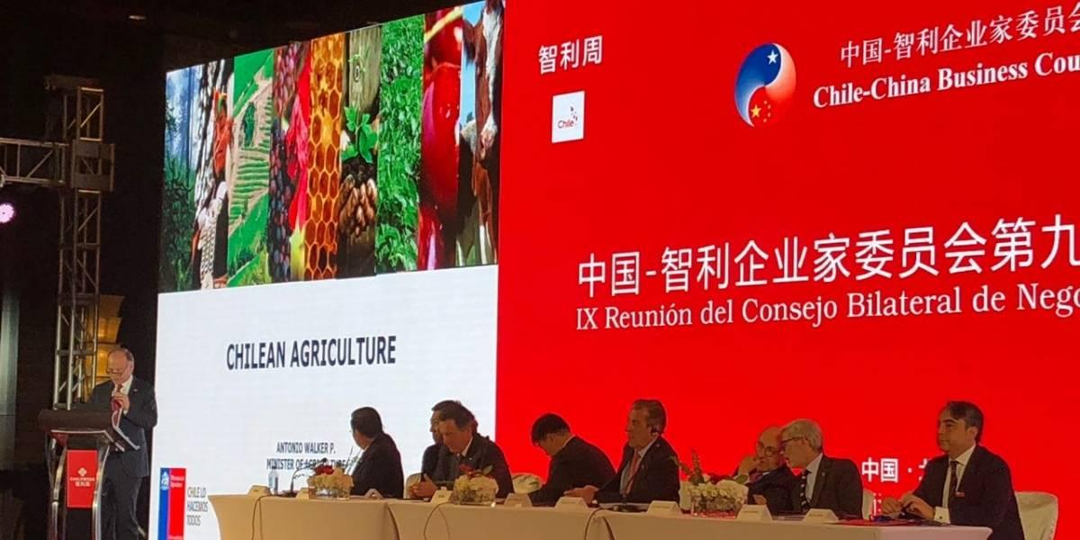 Autoridades le sacan el jugo a su visita a Beijing: Chile selló acuerdos para fortalecer la invasión de fruta nacional a las cocinas chinas