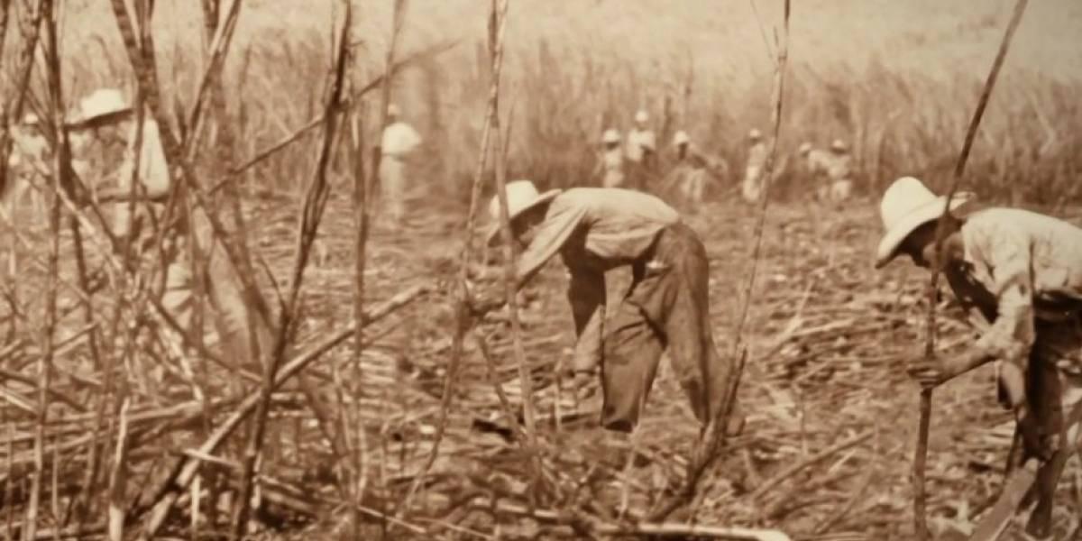 Presentan nueva campaña Rones de Puerto Rico: The Rum Standard