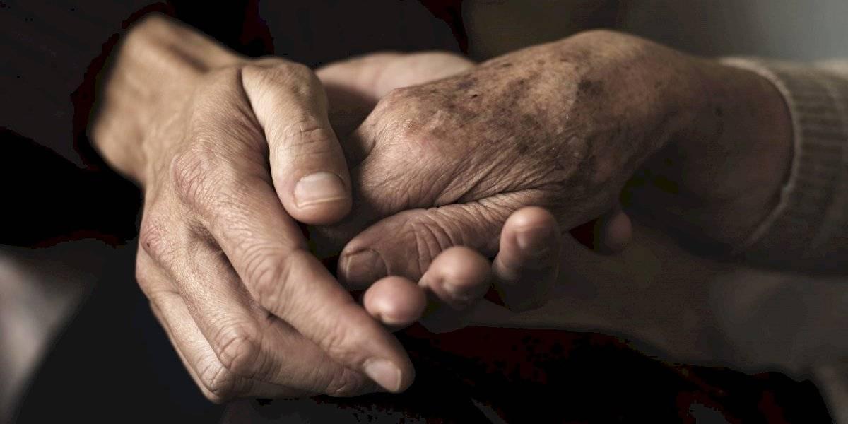 Radican cargos de maltrato envejecientes a hombre por robo en Jayuya