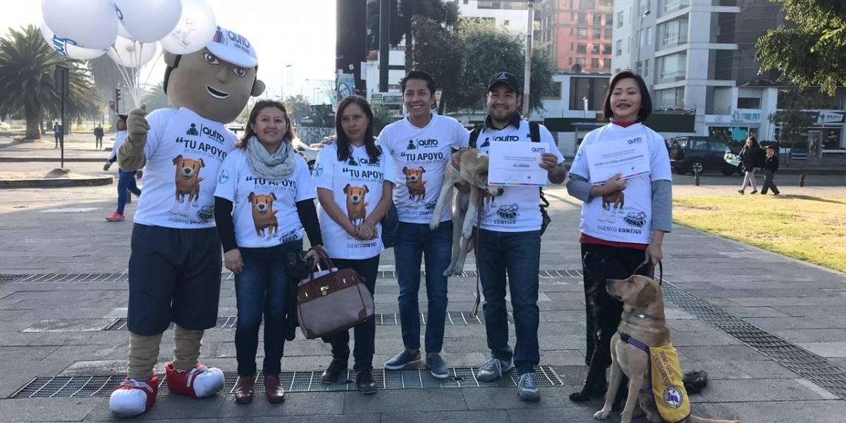 Quito: SEDI fomentará buenas prácticas para tener animales de compañía