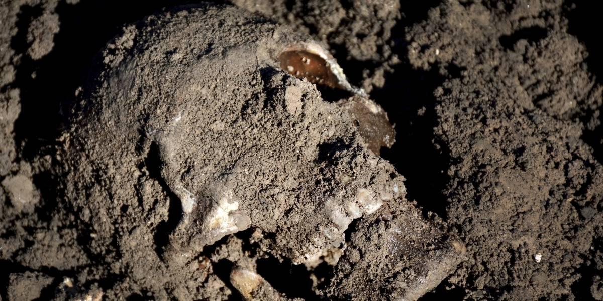 """""""Podría haber muchas más"""": Estado Islámico sepultó miles de cadáveres en al menos 200 fosas comunes"""