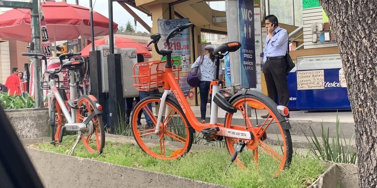 Proponen 'Torito' para usuarios de bicis y scooters