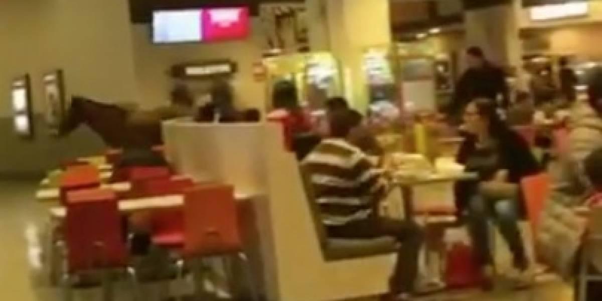 """Cosas que pasan en Chile: caballo irrumpe sorpresivamente en pleno patio de comidas de mall de Coronel y se va a """"jugar"""" a Happyland"""