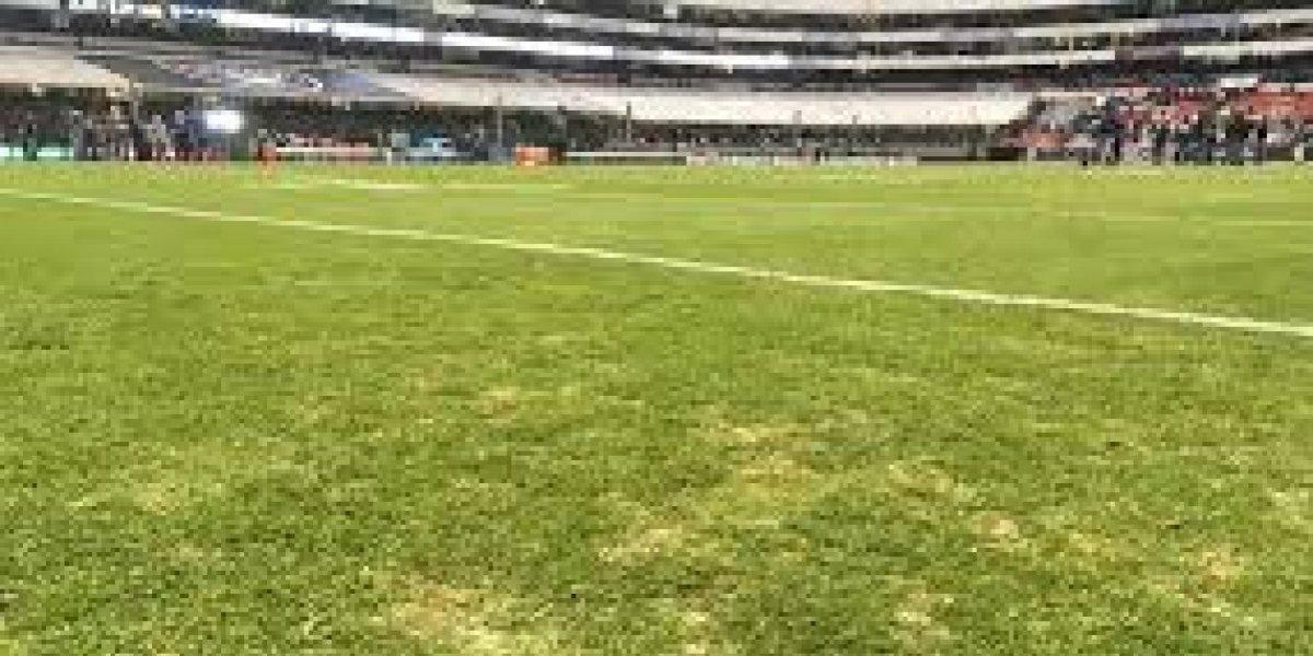 Pasto del Estadio Azteca se someterá a concierto de siete horas