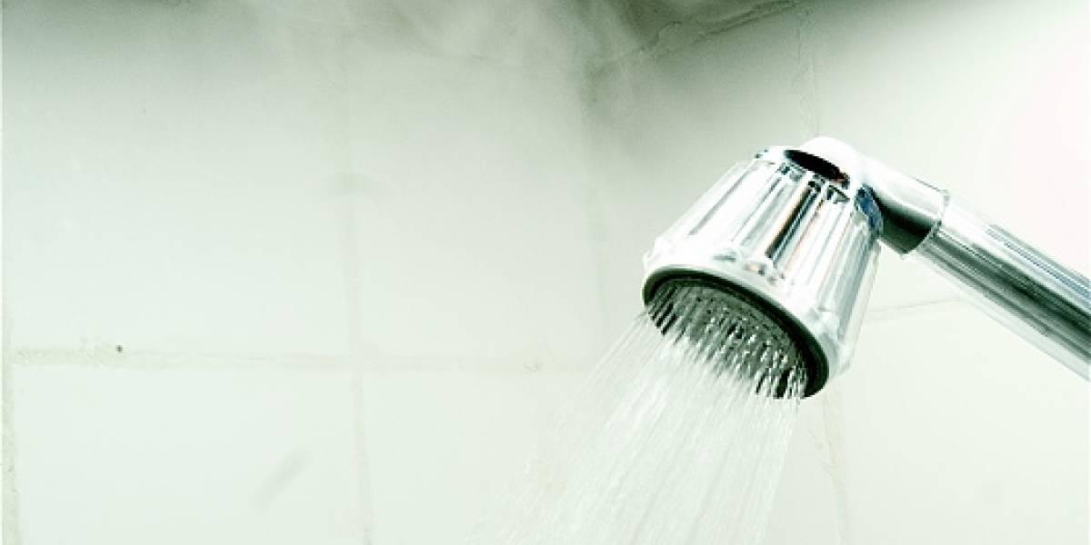 ¿Hay que tener cuidado al bañarse? Revelan que organismo potencialmente peligroso se esconde en la ducha
