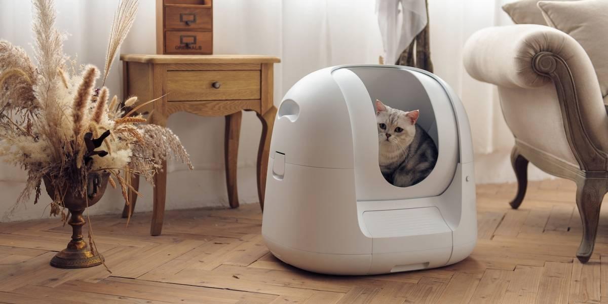 Este caja de arena inteligente monitorea la salud de tu gato con AI