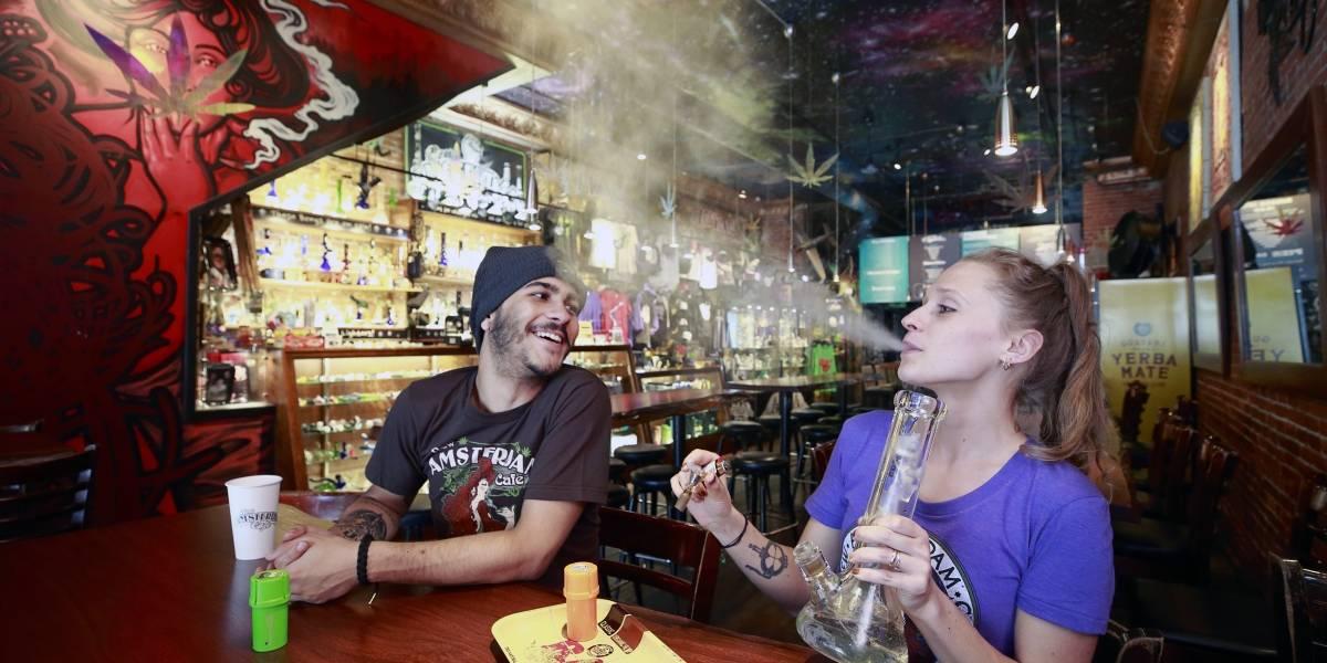 ¿Cómo le fue a la marihuana en los estados que votaron su legalización?