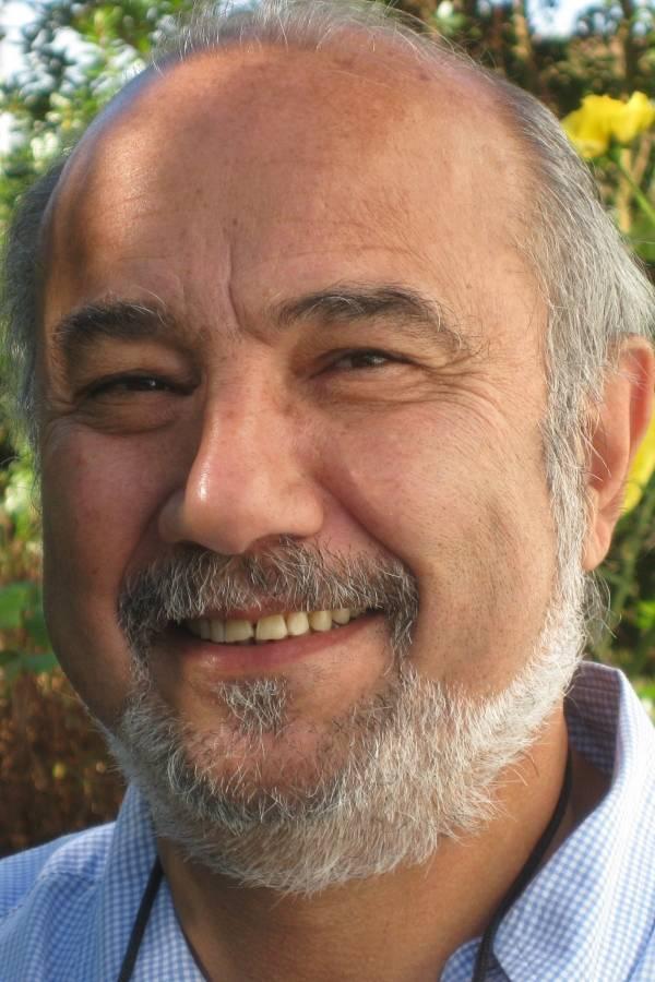 Hossein G. Askari, profesor de negocios internacionales y asuntos internacionales en la Universidad George Washington, EE. UU.