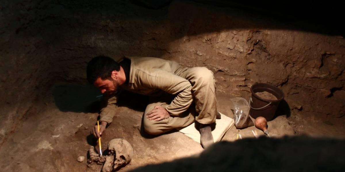 Como fósseis descobertos no Brasil ajudam a criar nova teoria sobre origem dos indígenas das Américas